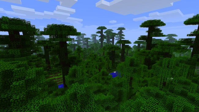 Minecraft jungles